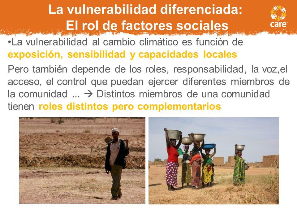 La vulnerabilidad diferenciada: El rol de factores sociales