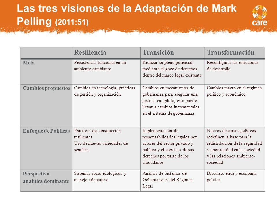 Las tres visiones de la Adaptación de Mark Pelling (2011:51)