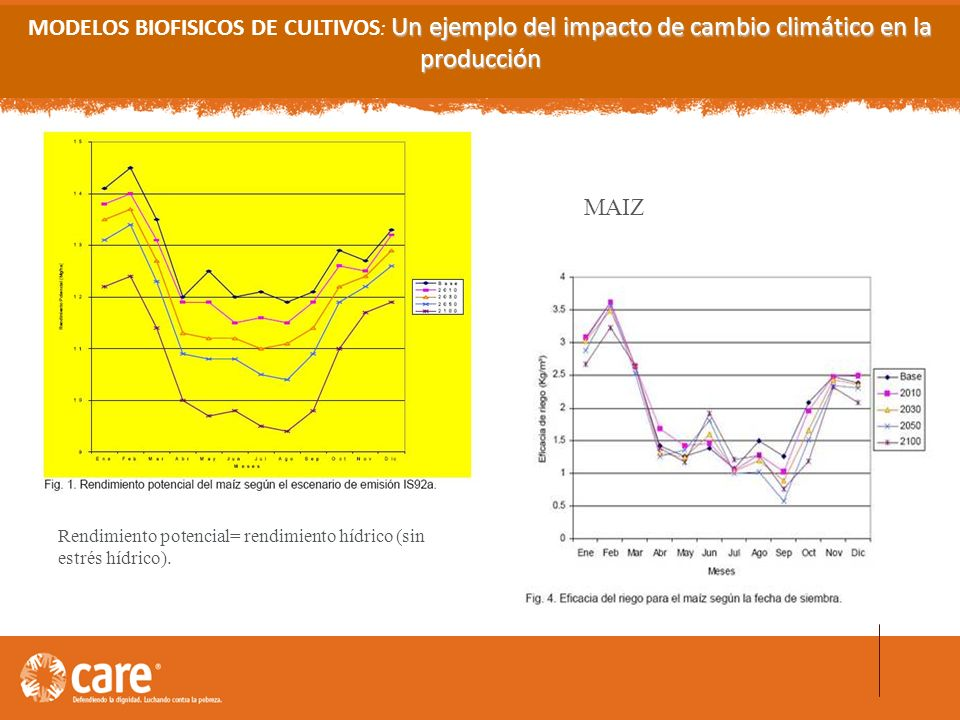 MODELOS BIOFISICOS DE CULTIVOS: Un ejemplo del impacto de cambio climático en la producción