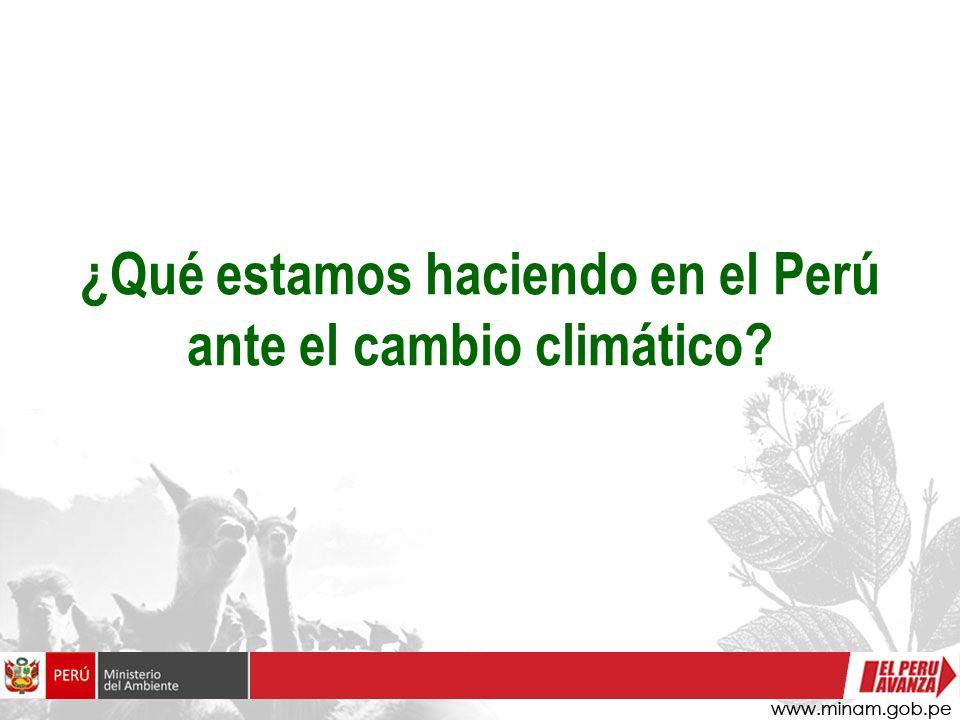 ¿Qué estamos haciendo en el Perú ante el cambio climático