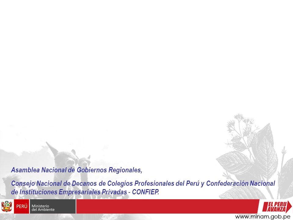 Asamblea Nacional de Gobiernos Regionales,