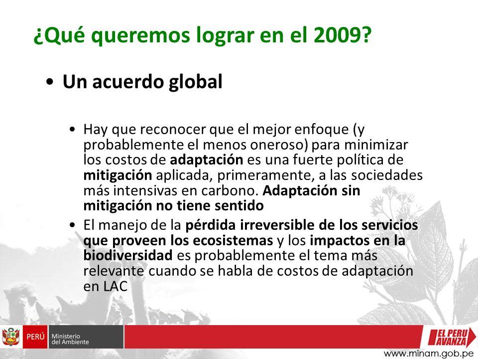 ¿Qué queremos lograr en el 2009