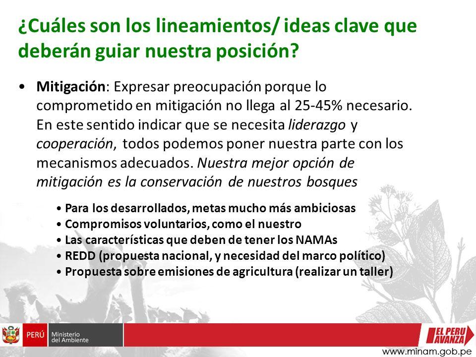 ¿Cuáles son los lineamientos/ ideas clave que deberán guiar nuestra posición