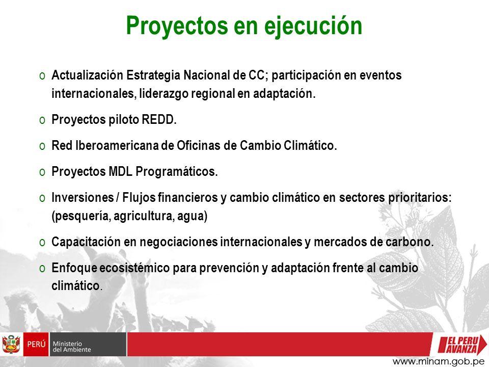 Proyectos en ejecución