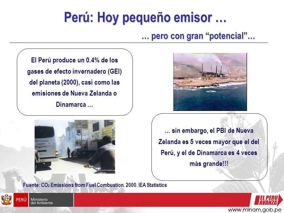 Perú: Hoy pequeño emisor …