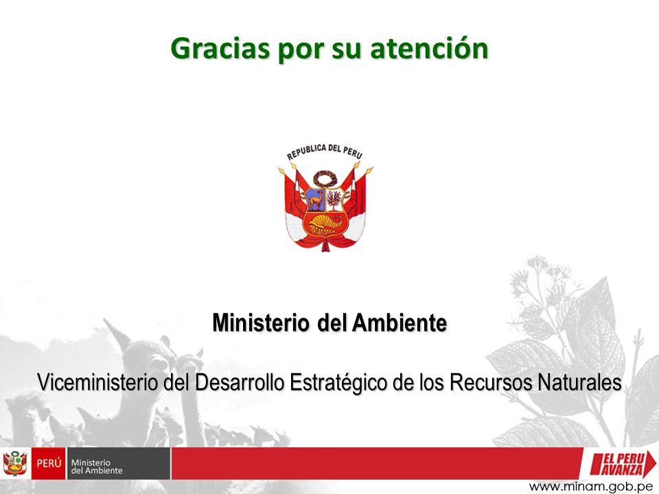 Gracias por su atención Ministerio del Ambiente