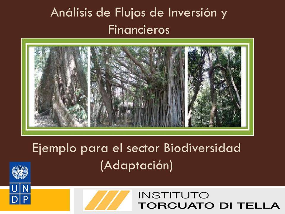 Análisis de Flujos de Inversión y Financieros
