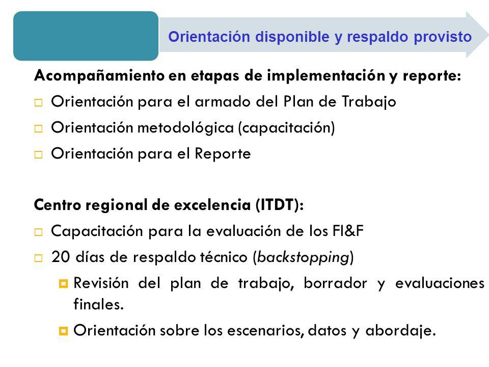 Acompañamiento en etapas de implementación y reporte: