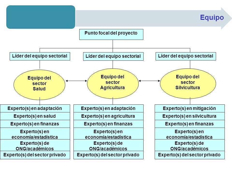 Equipo Punto focal del proyecto Líder del equipo sectorial