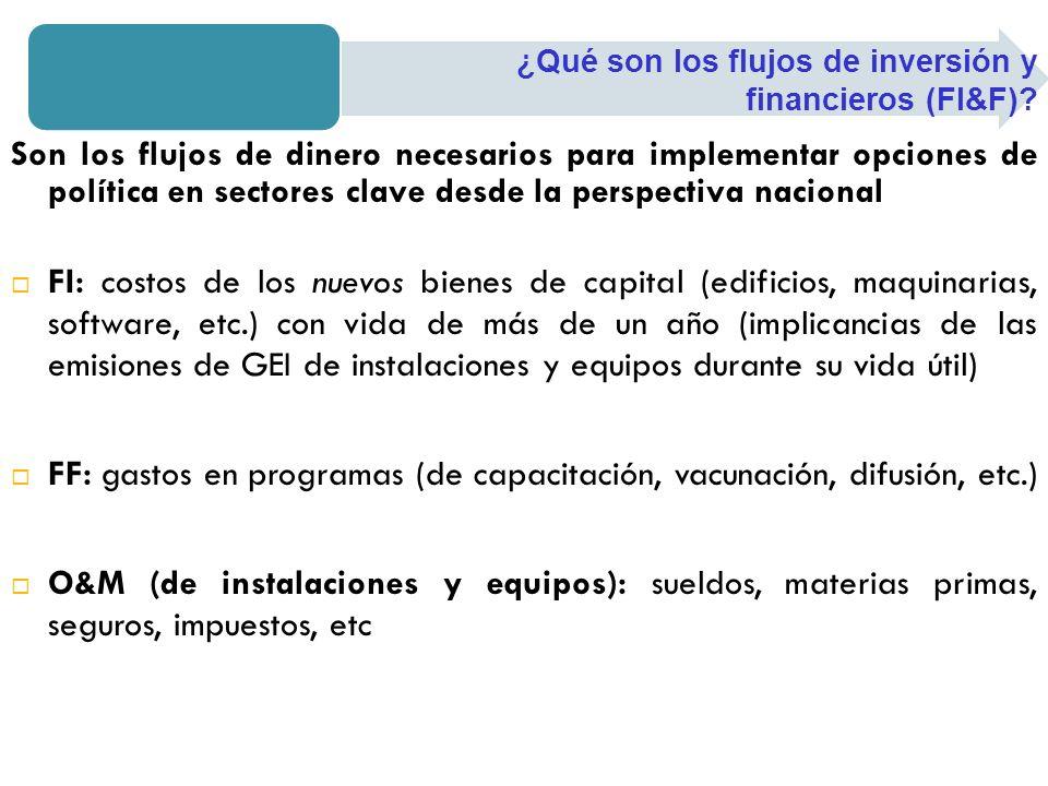 FF: gastos en programas (de capacitación, vacunación, difusión, etc.)