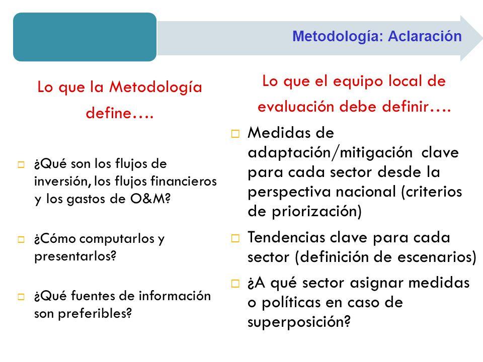 Lo que el equipo local de evaluación debe definir….