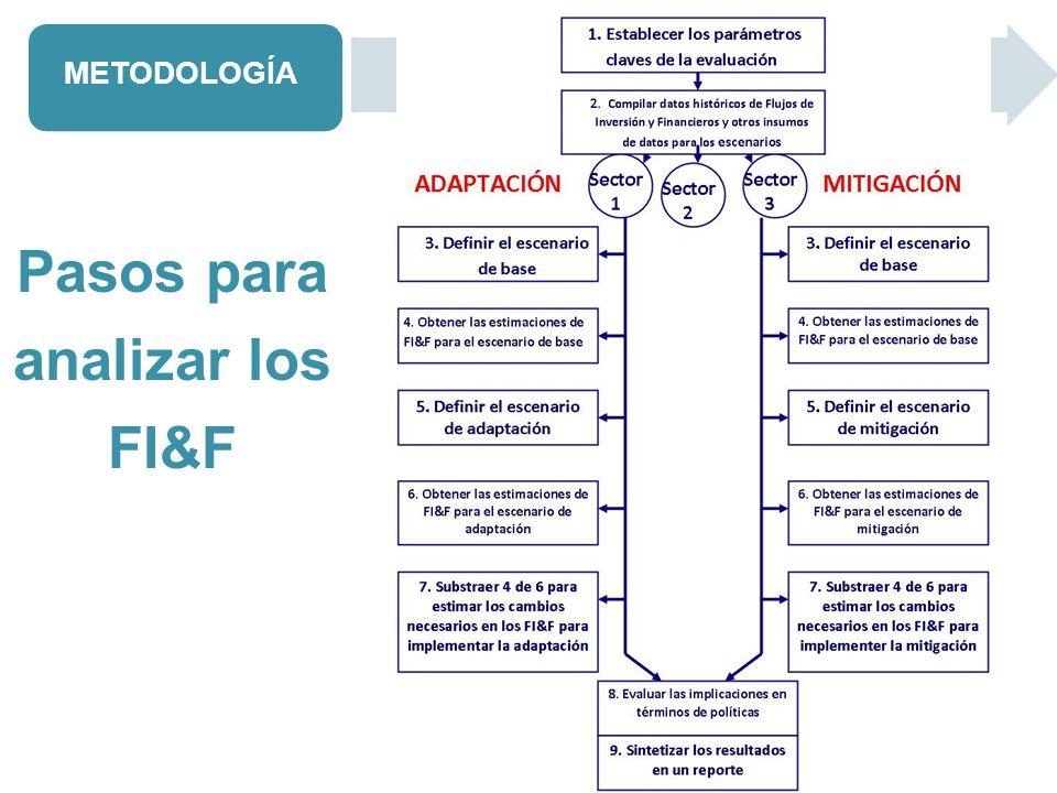Pasos para analizar los FI&F