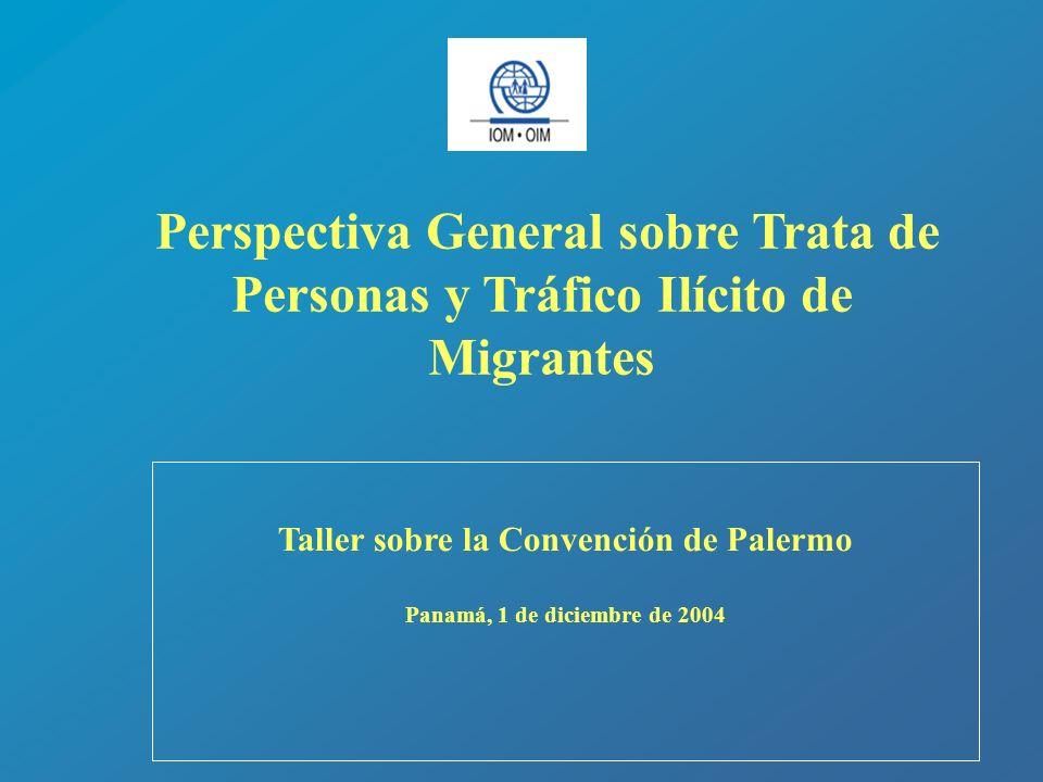 Taller sobre la Convención de Palermo