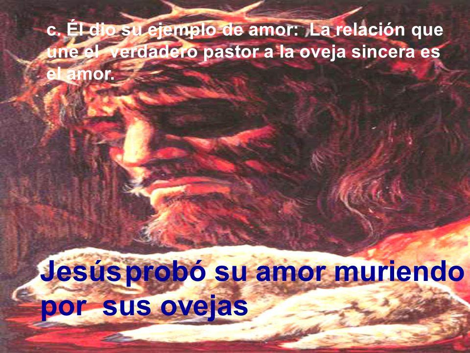 Jesús probó su amor muriendo por sus ovejas