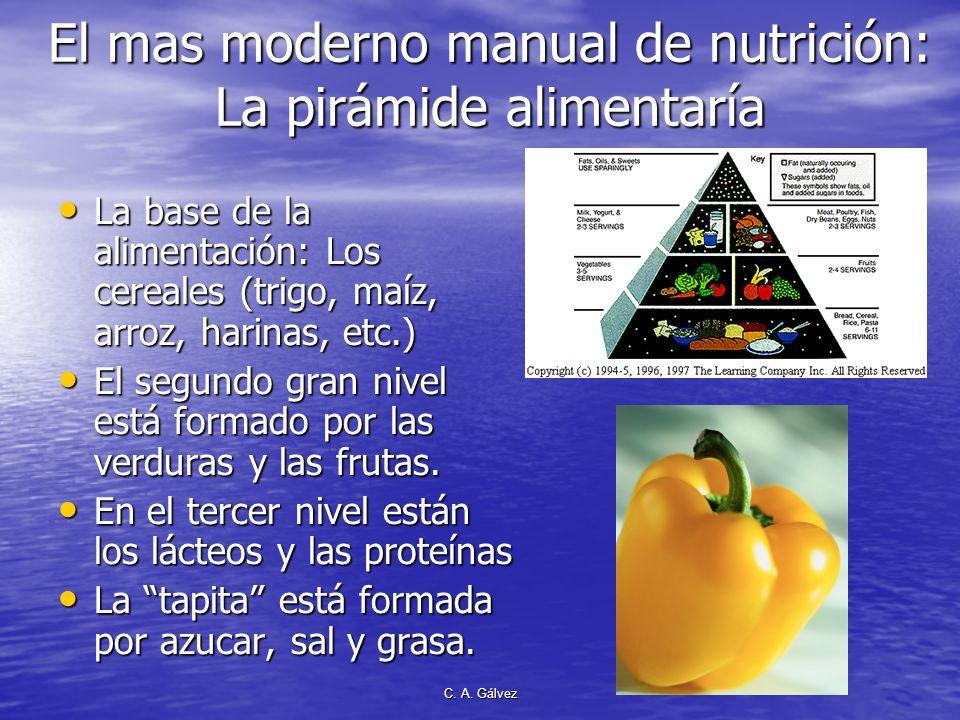 El mas moderno manual de nutrición: La pirámide alimentaría