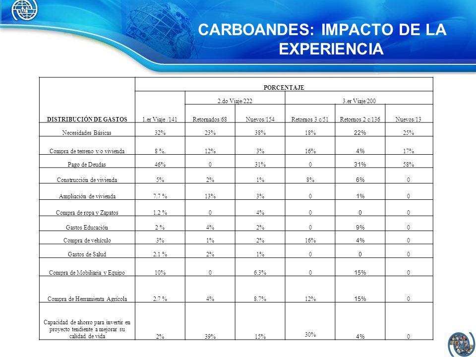 CARBOANDES: IMPACTO DE LA EXPERIENCIA DISTRIBUCIÓN DE GASTOS