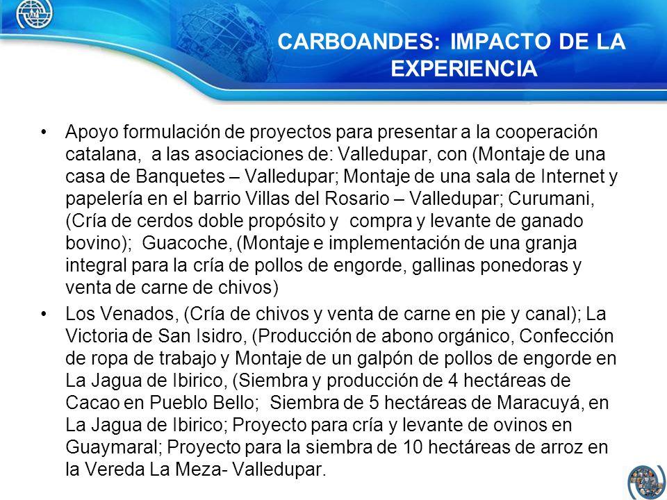 CARBOANDES: IMPACTO DE LA EXPERIENCIA