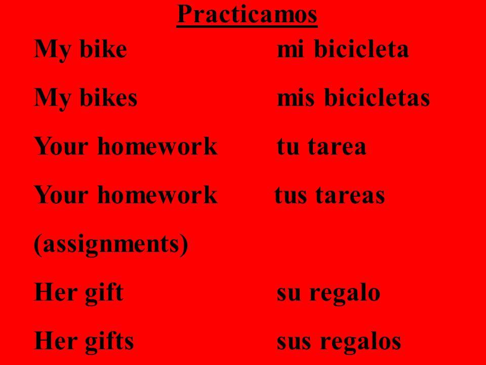 Practicamos My bike mi bicicleta. My bikes mis bicicletas. Your homework tu tarea. Your homework tus tareas.