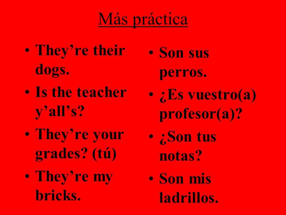 Más práctica They're their dogs. Son sus perros.