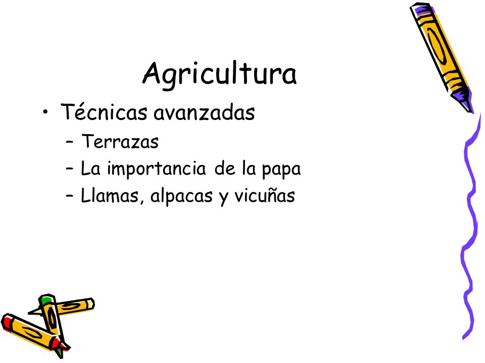 Agricultura Técnicas avanzadas Terrazas La importancia de la papa
