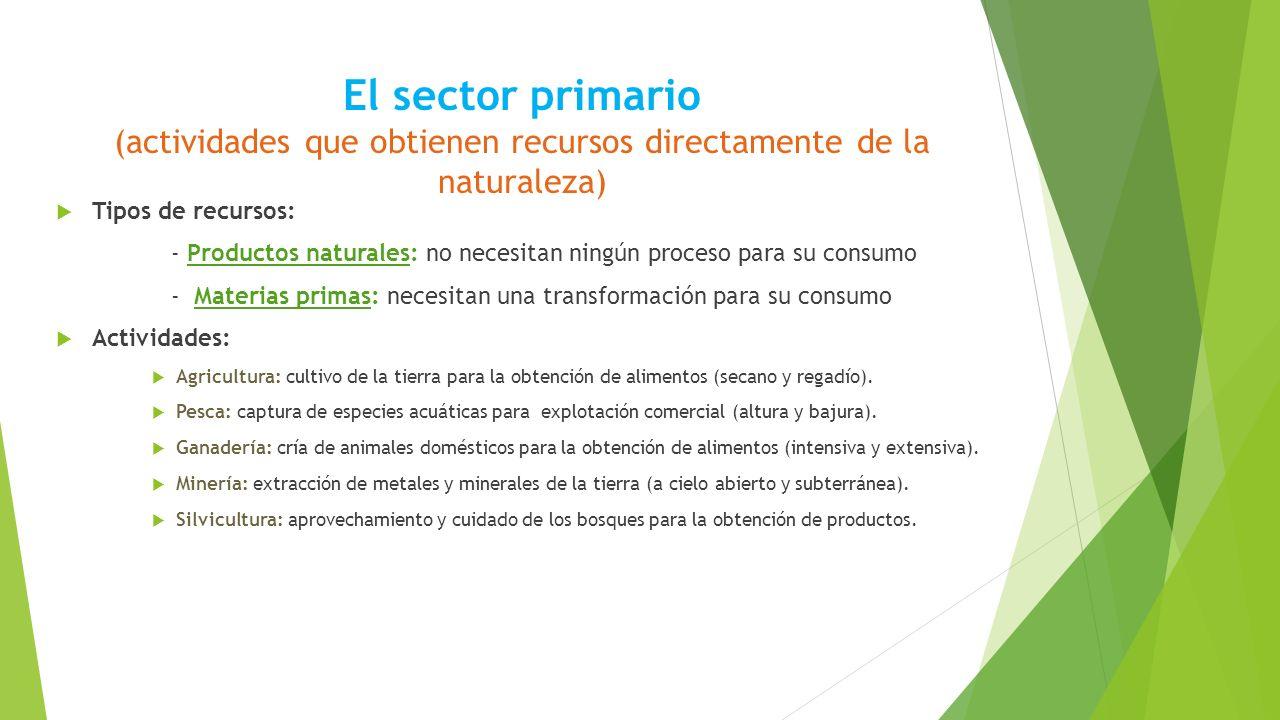 El sector primario (actividades que obtienen recursos directamente de la naturaleza)