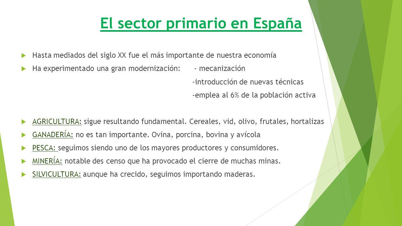 El sector primario en España