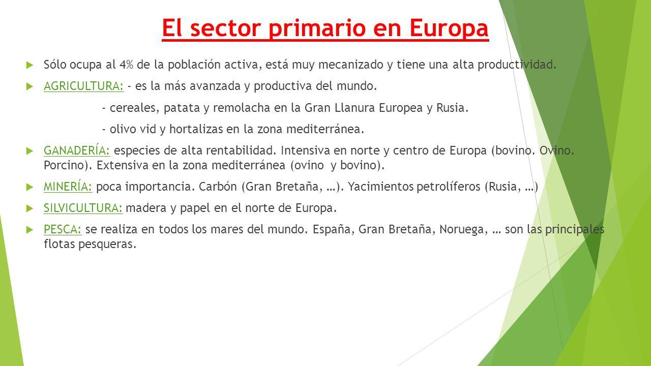 El sector primario en Europa