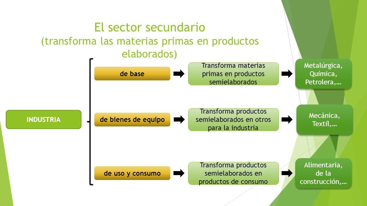 El sector secundario (transforma las materias primas en productos elaborados)