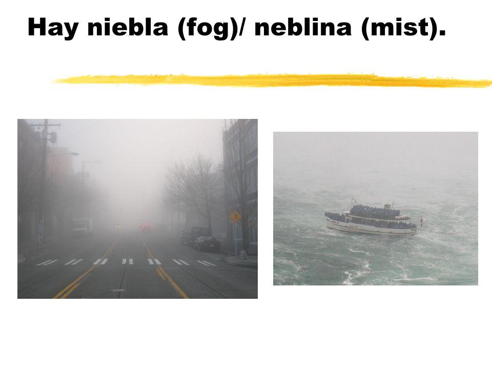 Hay niebla (fog)/ neblina (mist).