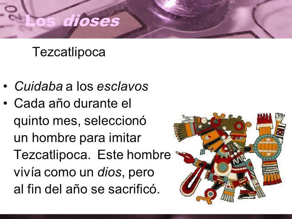 Los dioses Tezcatlipoca Cuidaba a los esclavos Cada año durante el