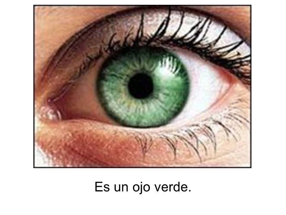 Es un ojo verde.