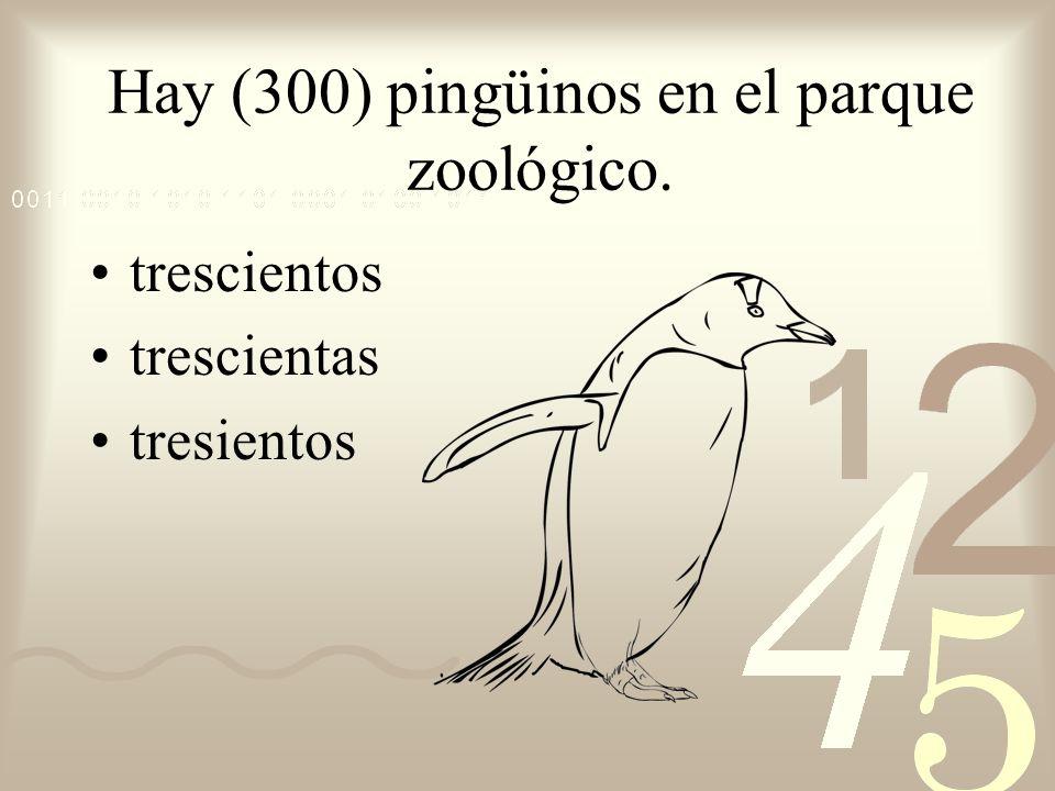 Hay (300) pingüinos en el parque zoológico.