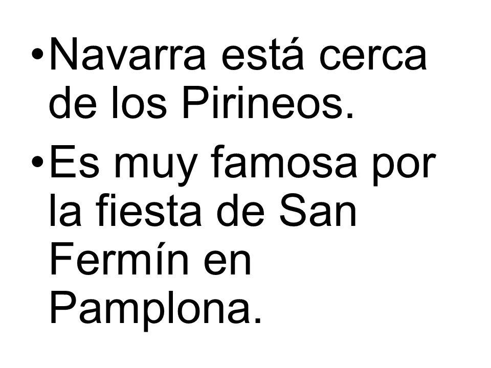 Navarra está cerca de los Pirineos.
