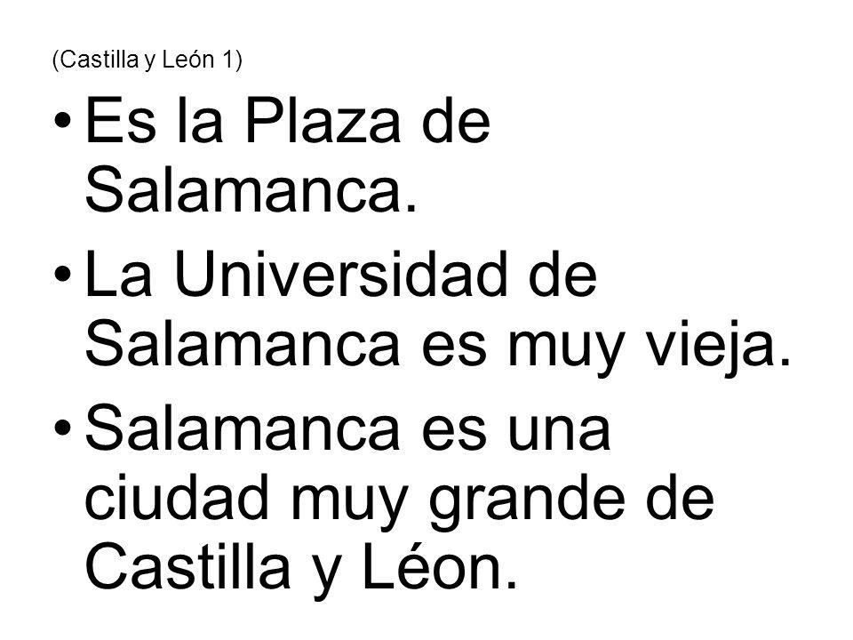 Es la Plaza de Salamanca. La Universidad de Salamanca es muy vieja.
