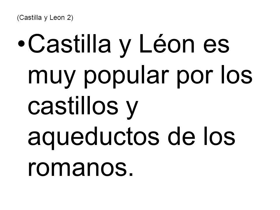 (Castilla y Leon 2) Castilla y Léon es muy popular por los castillos y aqueductos de los romanos.