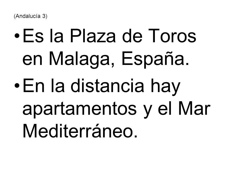 Es la Plaza de Toros en Malaga, España.