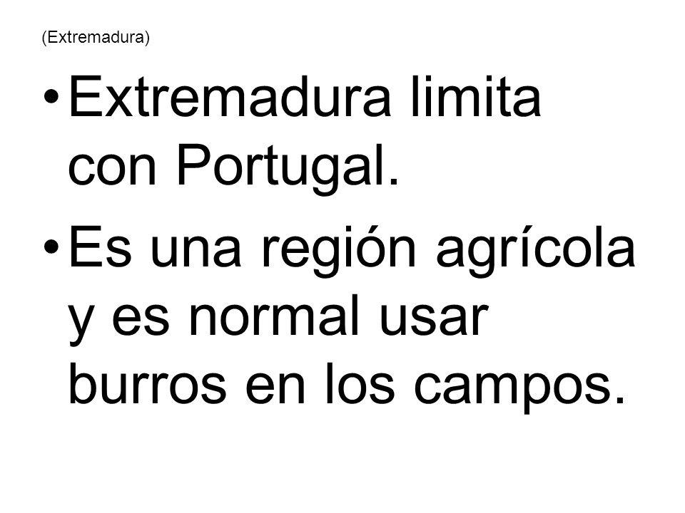 Extremadura limita con Portugal.