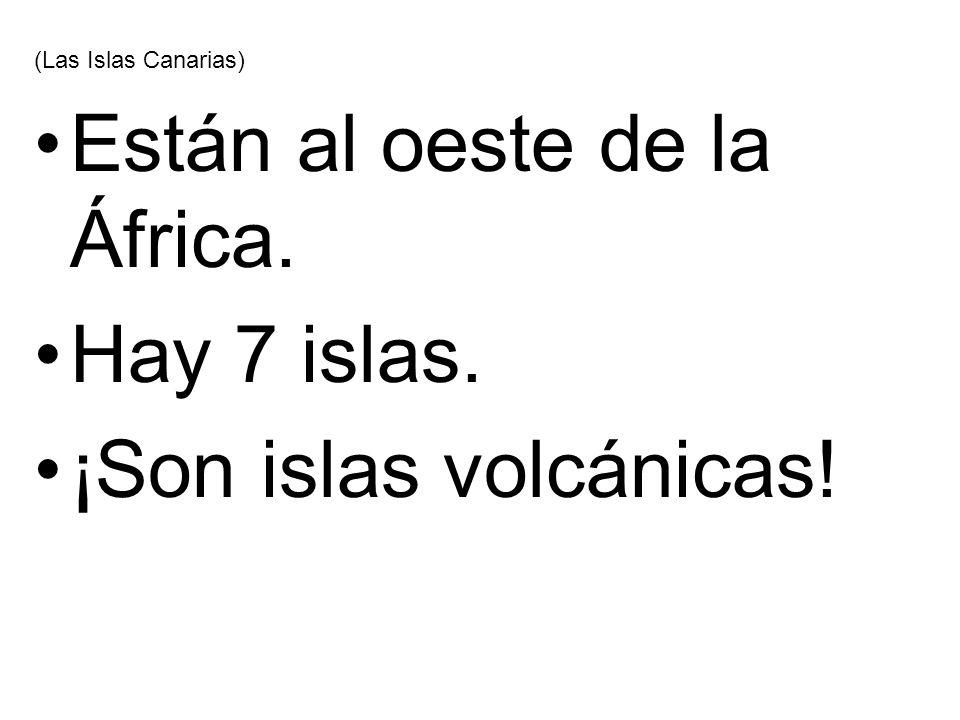 Están al oeste de la África. Hay 7 islas. ¡Son islas volcánicas!