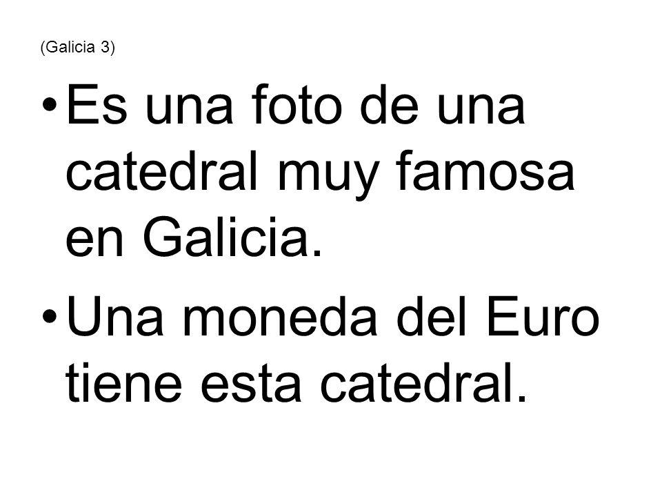Es una foto de una catedral muy famosa en Galicia.
