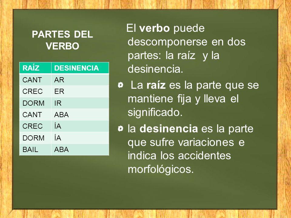 El verbo puede descomponerse en dos partes: la raíz y la desinencia.