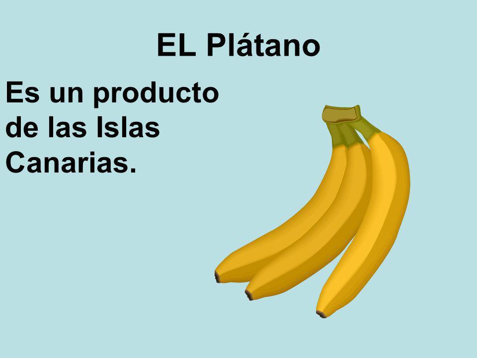 EL Plátano Es un producto de las Islas Canarias.