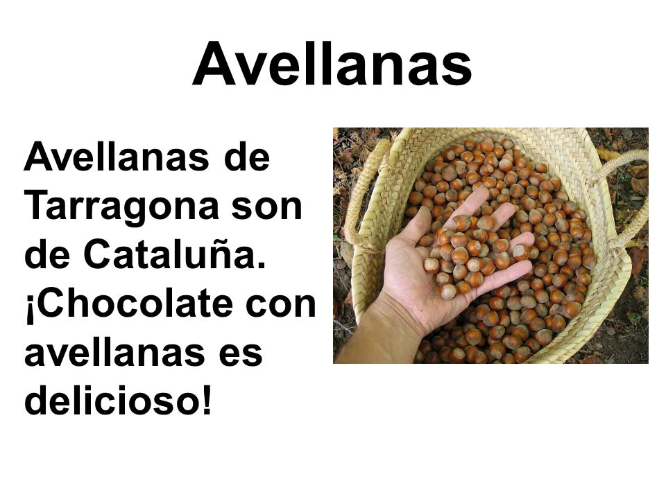 Avellanas Avellanas de Tarragona son de Cataluña. ¡Chocolate con avellanas es delicioso!