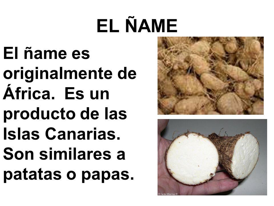 EL ÑAME El ñame es originalmente de África. Es un producto de las Islas Canarias.
