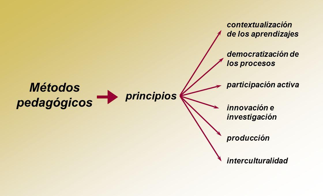 Métodos pedagógicos principios contextualización de los aprendizajes