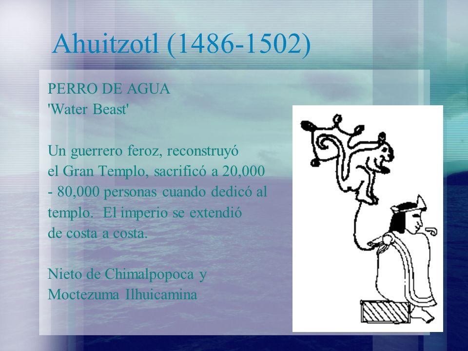 Ahuitzotl (1486-1502) PERRO DE AGUA Water Beast