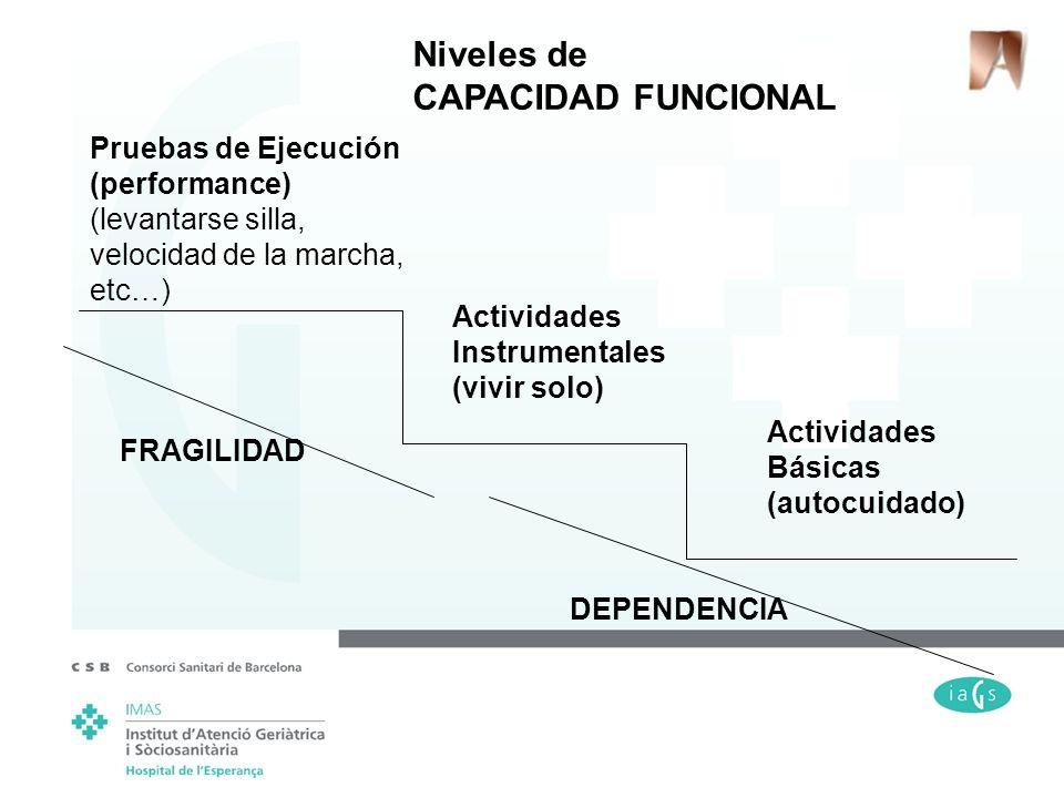 Niveles de CAPACIDAD FUNCIONAL Pruebas de Ejecución (performance)