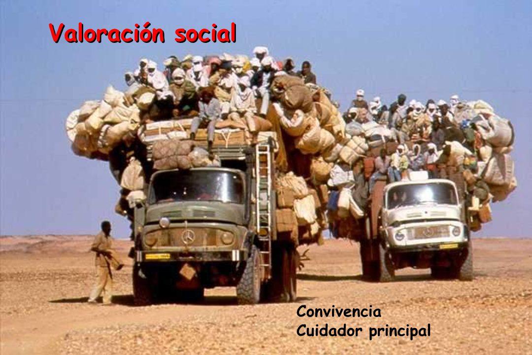 Valoración social Convivencia Cuidador principal