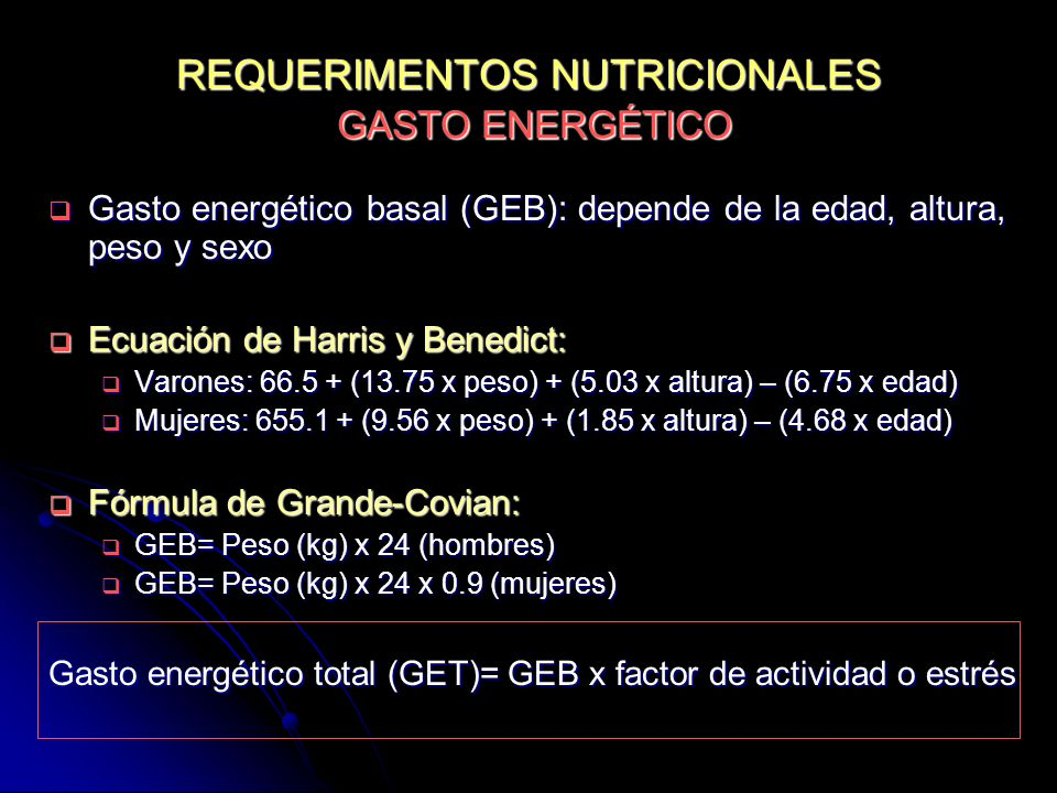 REQUERIMENTOS NUTRICIONALES GASTO ENERGÉTICO
