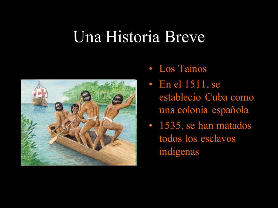 Una Historia Breve Los Tainos