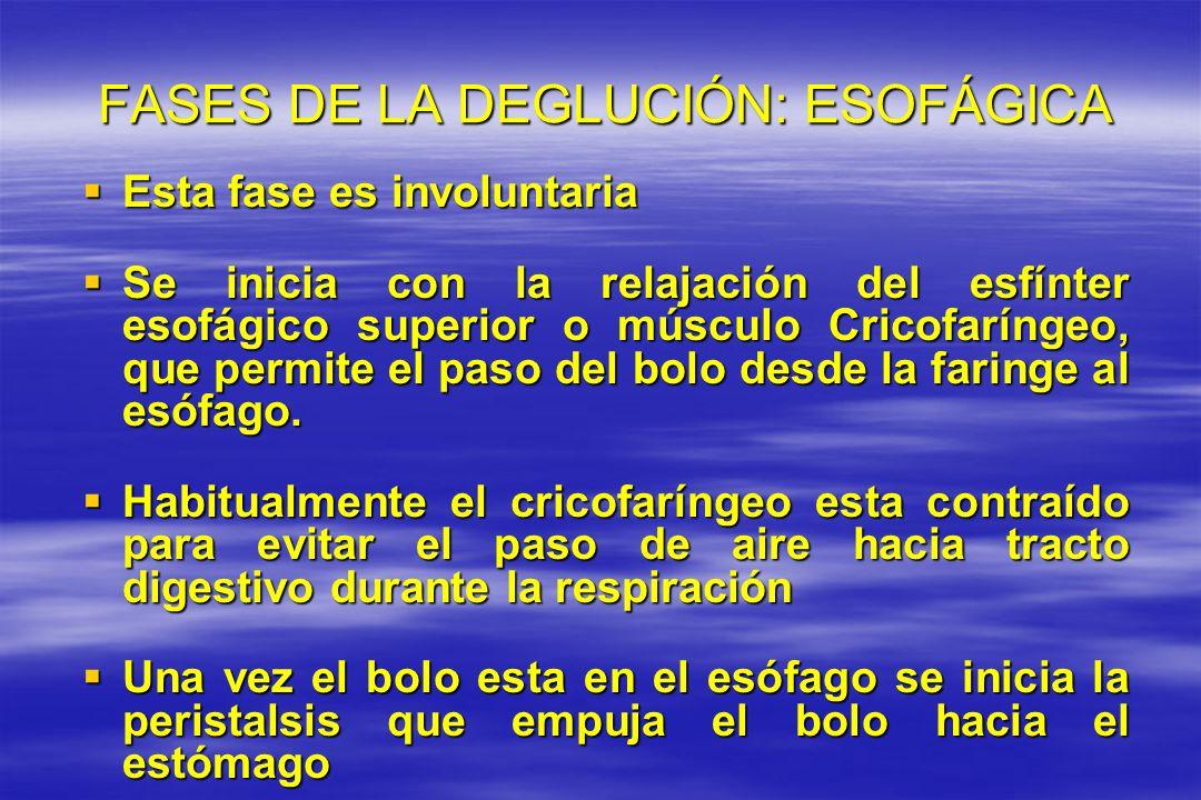FASES DE LA DEGLUCIÓN: ESOFÁGICA